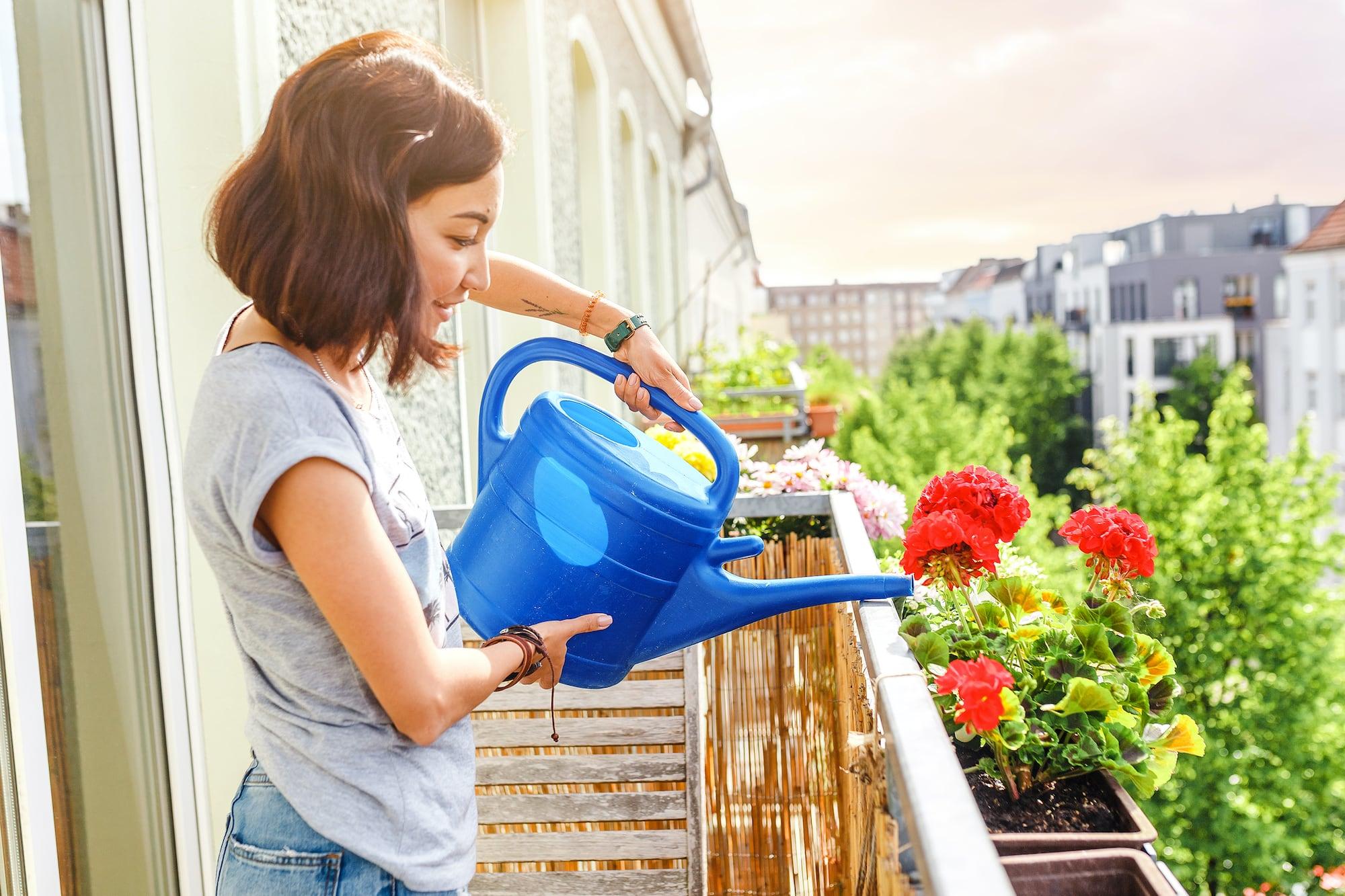 Từ A - Z các bước để có một vườn rau trên căn hộ chung cư