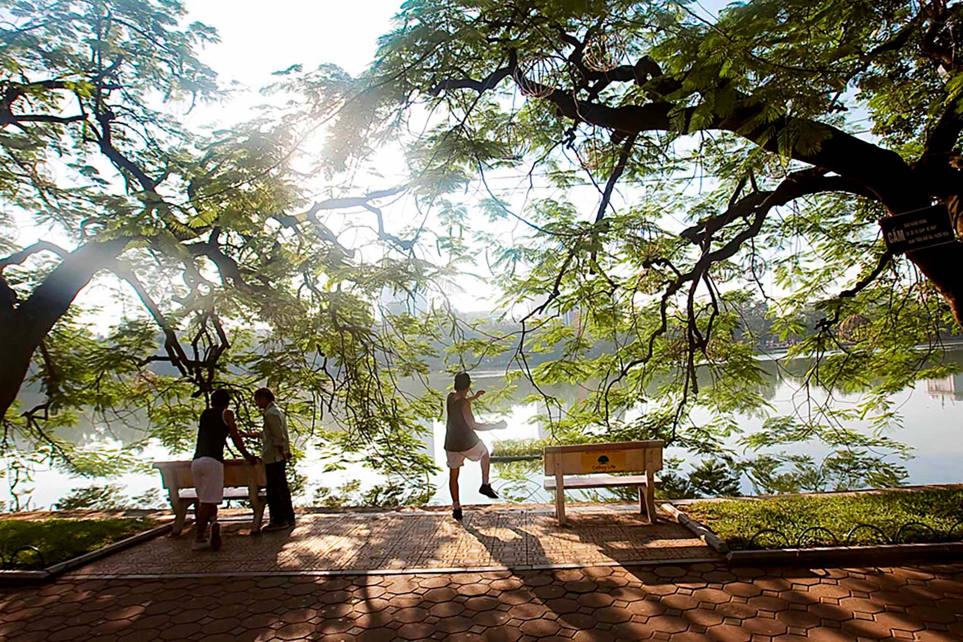 Hanoi Perspectives: Morning Exercise by the Lake