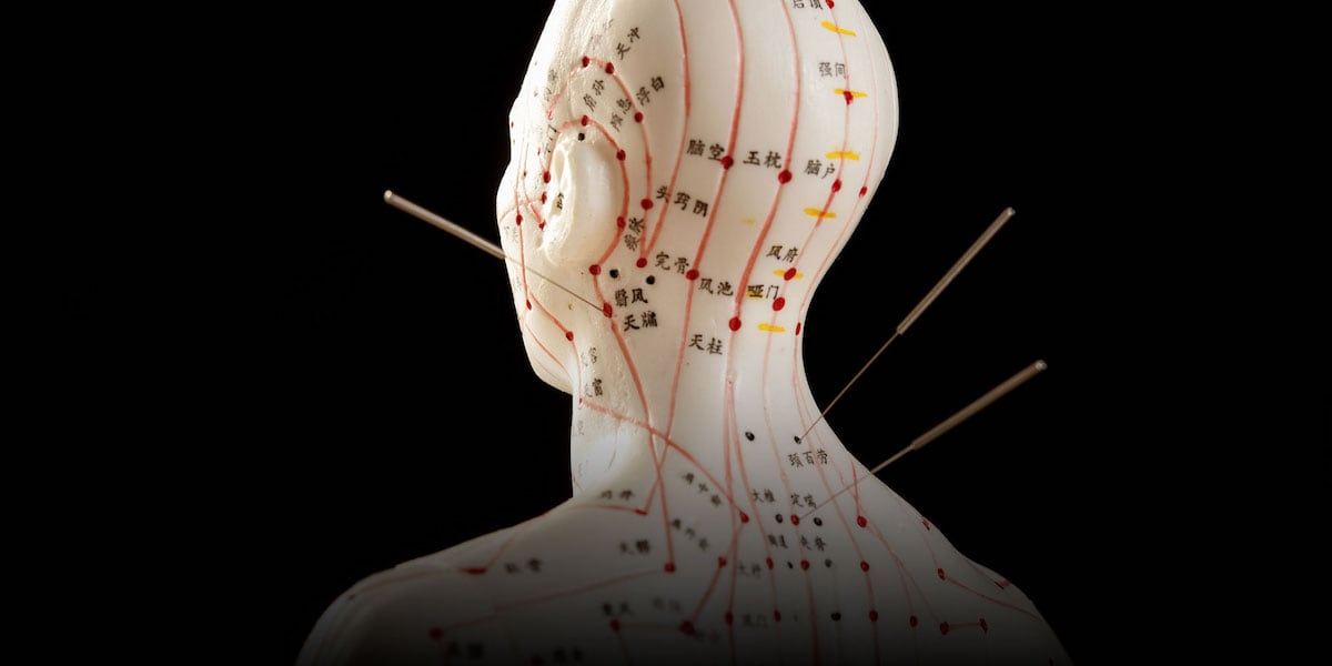 Acupuncture Meridian