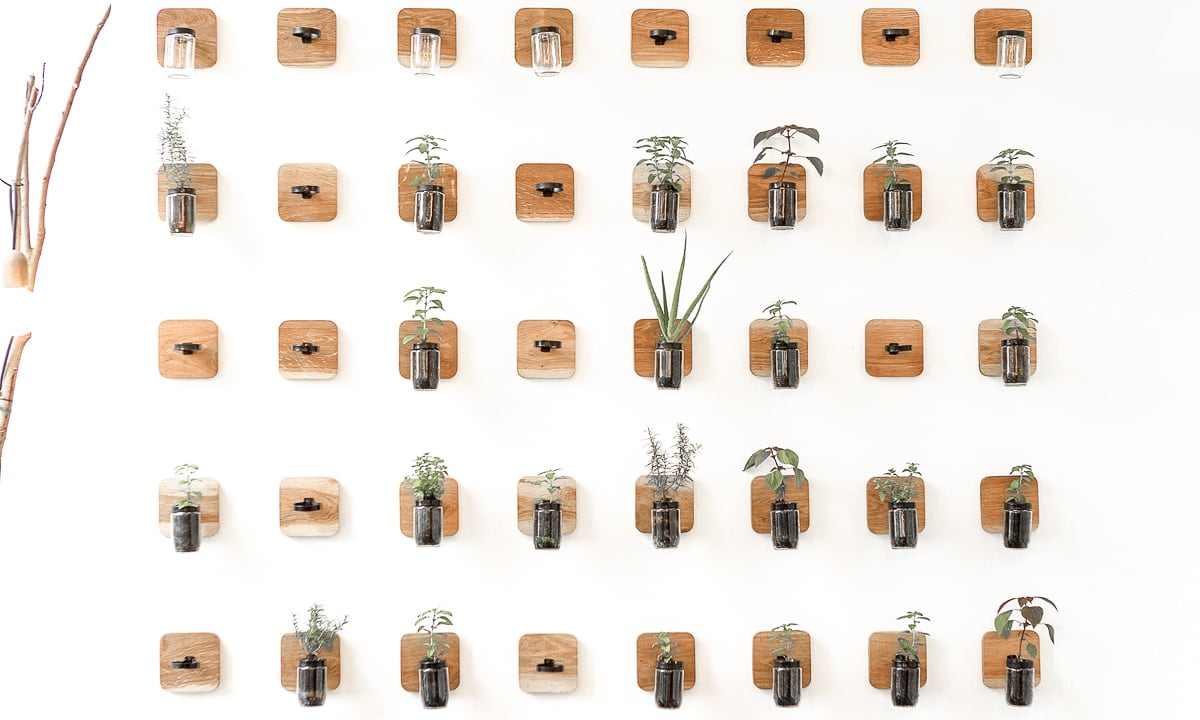 Plants Wall - AIA