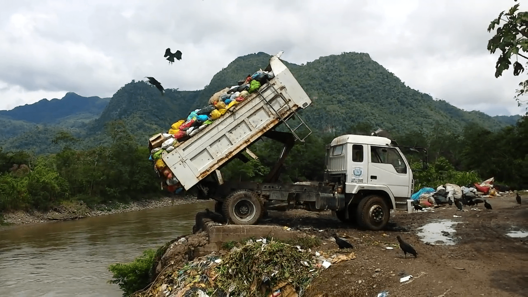 A Letter To The Editor: How Improper Recycling Processes Can Further Damage The Environment