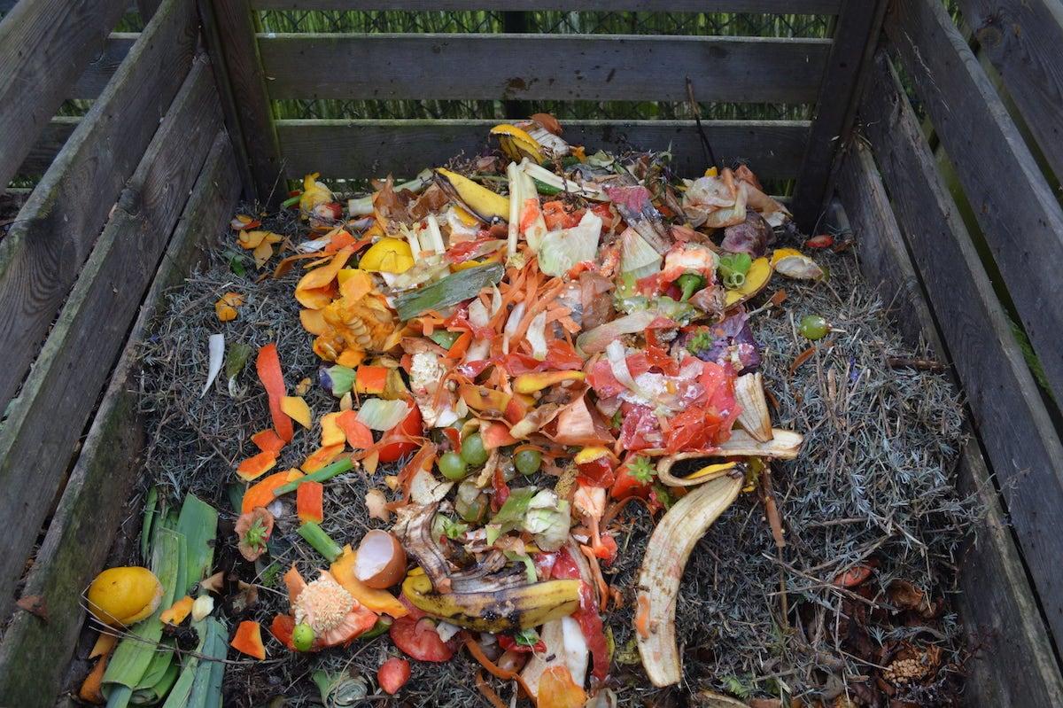 Xử lý rác hữu cơ 3