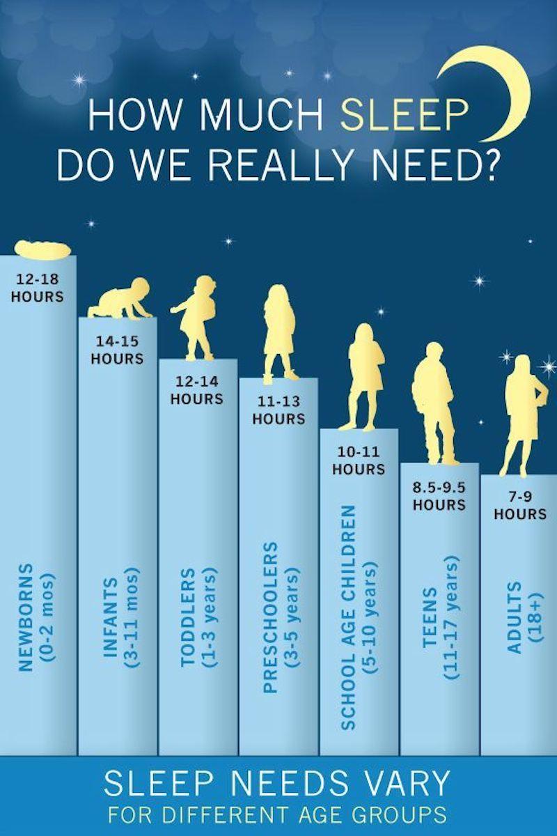 biểu đồ ngủ