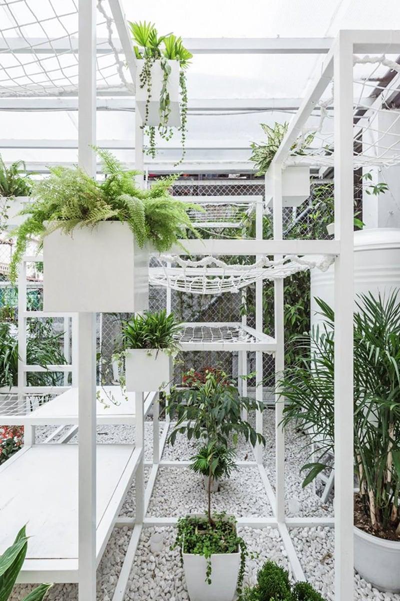 pavillion-plants