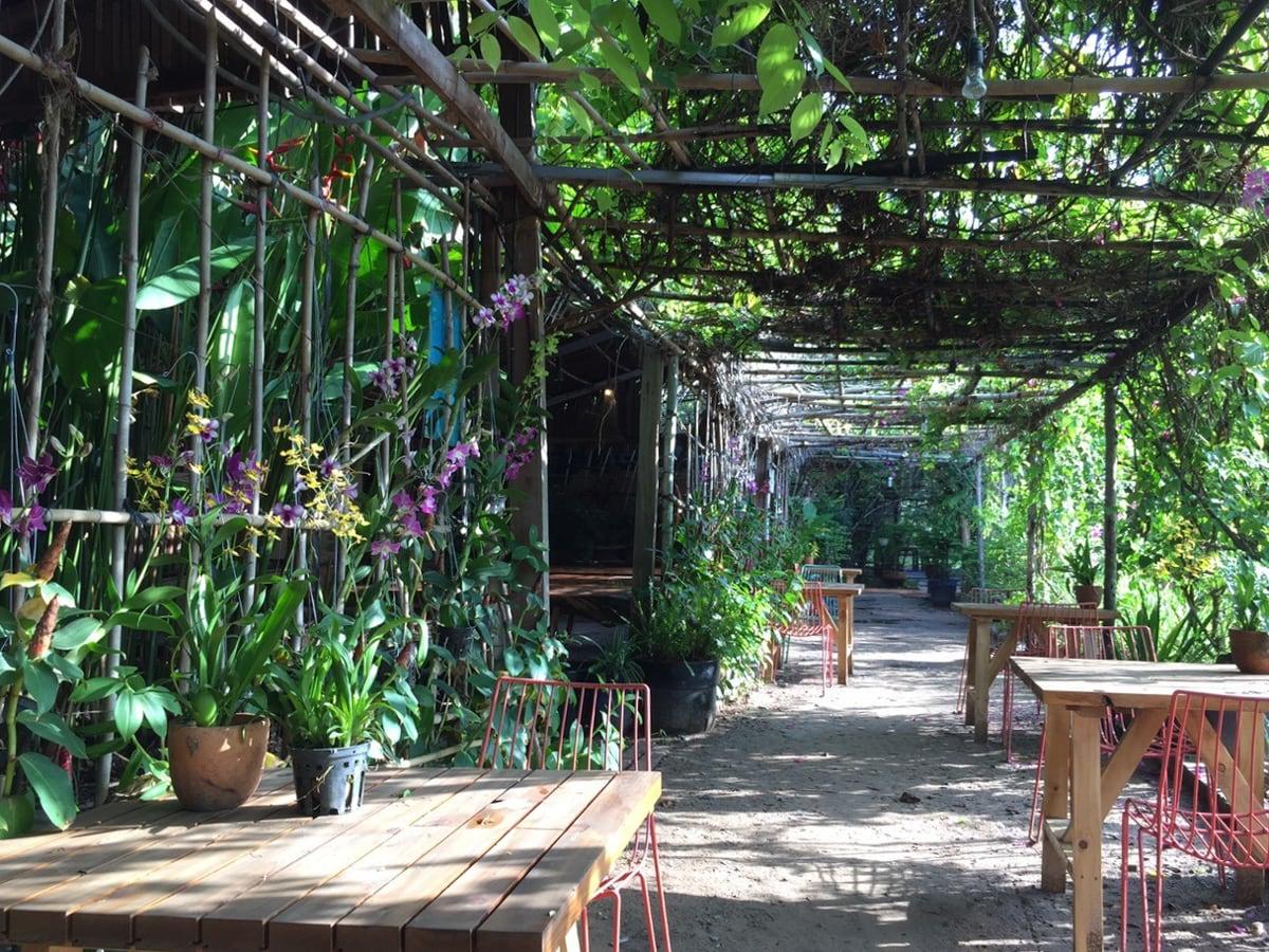 t3-garden